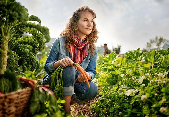 Organic Farmer Insurance