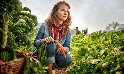 Lady picking carrots on Hobby Farm